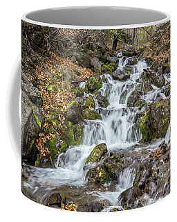 Falls Creek Coffee Mug