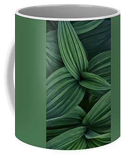 Coffee Mug featuring the photograph False Hellebore Plant Abstract by Nathan Bush