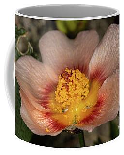 False Mallow Coffee Mug