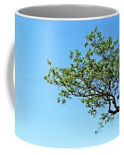 Far Reaching Coffee Mug