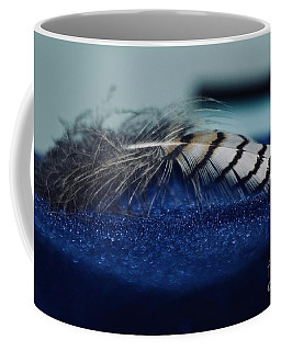 Coffee Mug featuring the photograph Feather by Ann E Robson