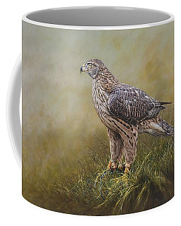Female Goshawk Paintings Coffee Mug
