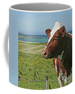Coffee Mug featuring the photograph Fenced In by PJ Boylan