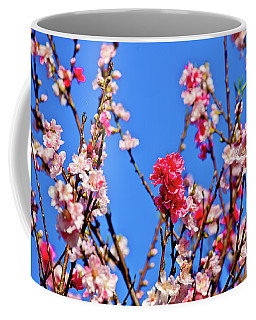 Pinks And Blues Coffee Mug