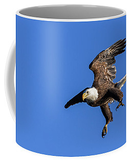 Coffee Mug featuring the photograph Final Approach by Lori Coleman