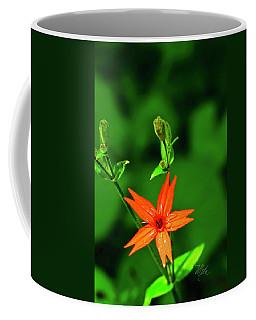 Coffee Mug featuring the photograph Fire Pink by Meta Gatschenberger