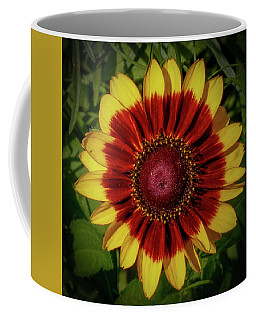 Coffee Mug featuring the photograph Firewheel by Lora J Wilson