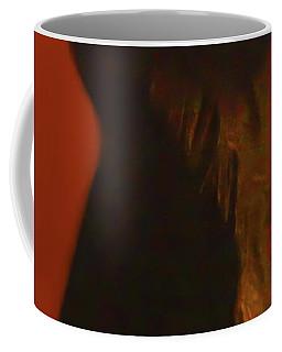 Coffee Mug featuring the photograph Flamenco Series 2 by Catherine Sobredo
