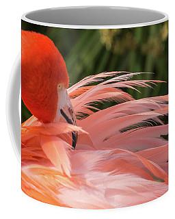 Flamingo Preening Coffee Mug