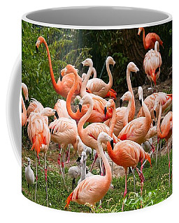 Flamingos Outdoors Coffee Mug