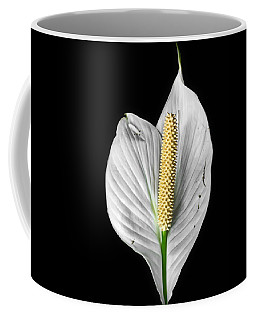 Flawed Beauty Coffee Mug