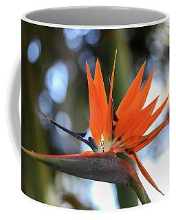 Flight To Paradise Coffee Mug