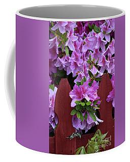 Floral Fencing  Coffee Mug
