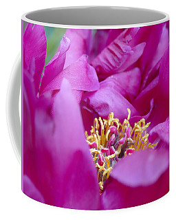 Coffee Mug featuring the photograph Floral Melody #1 by Ahma's Garden