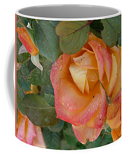Coffee Mug featuring the photograph Floral Melody #2 by Ahma's Garden