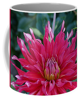 Coffee Mug featuring the photograph Floral Melody #4 by Ahma's Garden