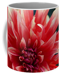 Coffee Mug featuring the photograph Floral Melody #5 by Ahma's Garden