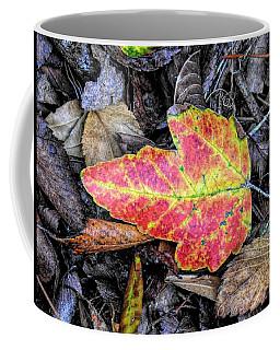 Florida Foliage Coffee Mug