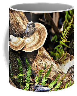 Florida Forest Coffee Mug