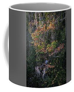 Florida Heron In Red Maple Coffee Mug