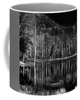 Coffee Mug featuring the photograph Fly Pond Reflection by David Patterson