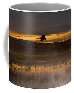 Flying Over Crane Pond Coffee Mug
