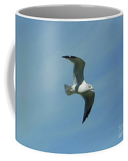 Coffee Mug featuring the photograph Flying Seagull by Rockin Docks