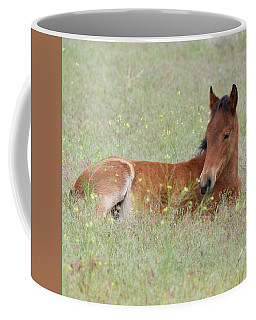 Coffee Mug featuring the photograph Foal In The Flowers by Mary Hone