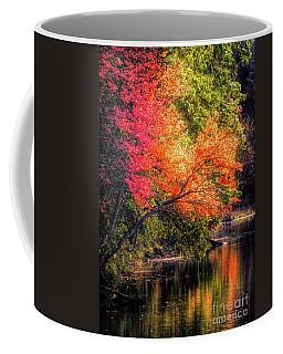 Foliage Over Forge Pond Coffee Mug