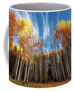 Coffee Mug featuring the photograph Follow The Yellow Leaf Road by Rick Furmanek
