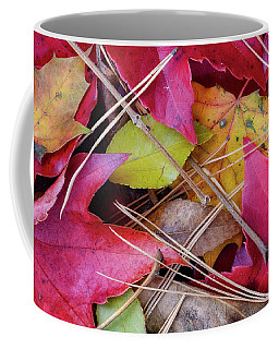 Coffee Mug featuring the photograph Forest Floor 1 by Michael Hubley