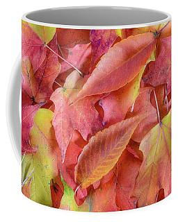 Forest Floor 2 Coffee Mug