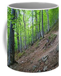 Forest On Balkan Mountain, Bulgaria Coffee Mug