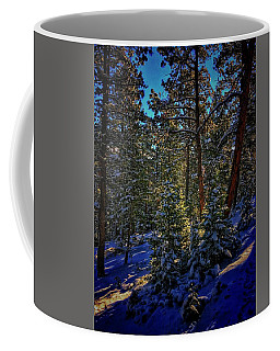 Coffee Mug featuring the photograph Forest Shadows by Dan Miller
