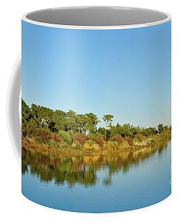 Forests Mirror Coffee Mug