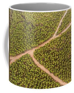 Coffee Mug featuring the photograph Fork by Okan YILMAZ