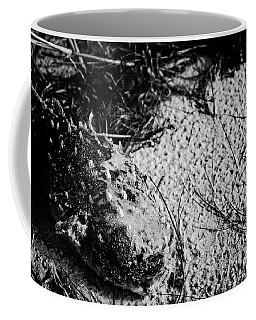 Found Fish Coffee Mug