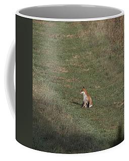 Fox Bsking In The Sun 1 Coffee Mug