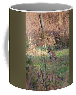 Fox In The Wild Coffee Mug