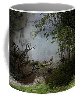 Fox On Rocks Coffee Mug