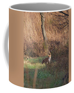 Fox On The Hunt Coffee Mug