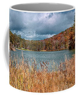 Framed Lake Coffee Mug
