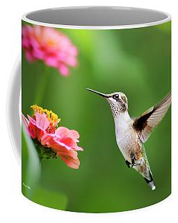 Free As A Bird Hummingbird Coffee Mug