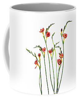 Freesia 3 Coffee Mug
