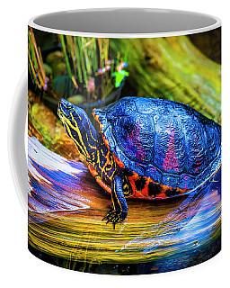 Freshwater Aquatic Turtle Coffee Mug