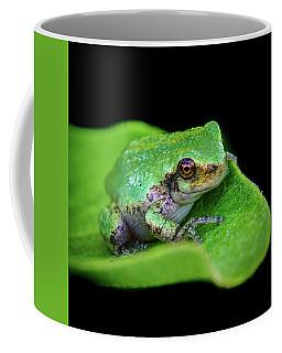Frogie Coffee Mug