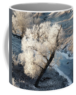 Coffee Mug featuring the photograph Frosted Tree And Creek 01 by Rob Graham