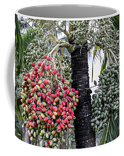 Fruity Palm Tree  Coffee Mug