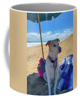 Coffee Mug featuring the photograph Fun Doggie Day At The Beach by Lora J Wilson