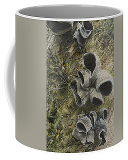 Fungi And Algae Coffee Mug